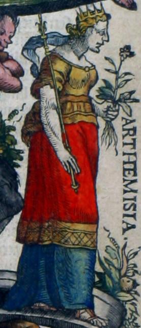 Arthemisia (Artemisia), koningin van Karië, echtgenote van koning Mausolus te Halicarnassus, ter ere van wiens nagedachtenis zij het Mausoleum liet bouwen (353 v. Chr.), dat als een van de zeven antieke wereldwonderen gold. Een plantengeslacht van de Composietenfamilie is naar haar vernoemd: Artemisia. In haar linkerhand heeft ze vermoedelijk de plant die naar haar is vernoemd, maar het is niet duidelijk welke soort het is. Volgens de overlevering zou zij zelf veel bijvoet (Artemisia vulgaris) hebben gebruikt