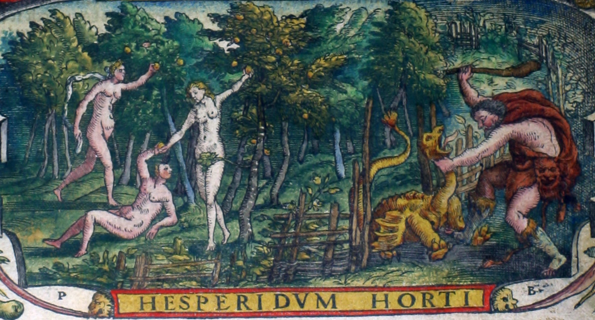 Tuin der Hesperiden (Hesperidum Horti) afgebeeld. De Hesperiden, 'avondmeisjes' of'dochters van de nacht' ('hespera' is avond in het Grieks), woonden in het verre westen, aan het einde van de wereld, in het land waar de zon ondergaat. In een niet ver van het Atlasgebergte gelegen tuin van Hera bewaakten zij een boom (de levensboom, waaraan gouden, eeuwige jeugd schenkende appelen groeiden) die de godin Gaia (de Aarde) uit haar schoot liet voortkomen, om aan Hera, toen deze met Zeus in het huwelijk trad, een kostbaar bruidsgeschenk te geven. Om die boom nog veiliger te doen bewaken stelde de godin een tweede wachter over haar appelen aan, namelijk de honderdkoppige draak Ladon, een zoon van Typhon en Echidna, die nooit sliep, en door zijn voortdurend gebrul allen die in de nabijheid kwamen, verjoeg. Alleen de held Herakles kon dit monster aan. Hij versloeg het toen hij door Eurystheus uitgezonden werd om drie van die appelen te halen.